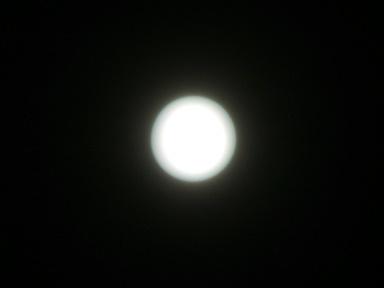 P1150858.jpg